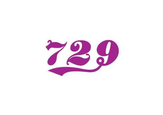 Thông số mặt vợt 729