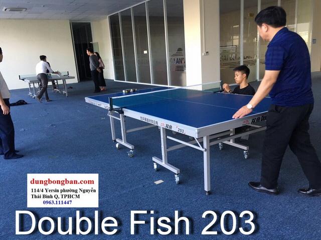 Bàn bóng bàn Double fish 203M