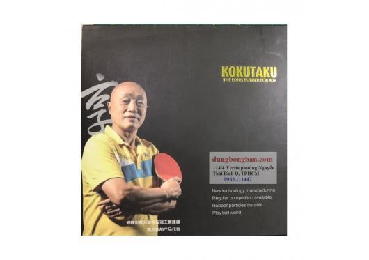 Gai Kokutaku 911 phiên bản Vương Kiến Cương