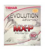 Evolution MXP 50