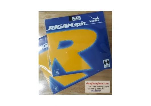 Rigan spin