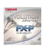 Tibhar Evolution FXP