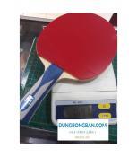 Combo vợt bóng bàn cao cấp trọng lượng nhẹ